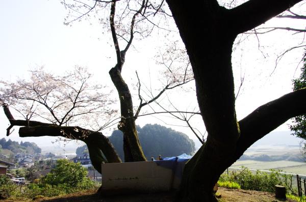 IMGP1359.jpg