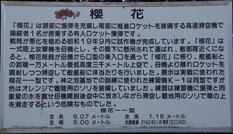 05 桜花1