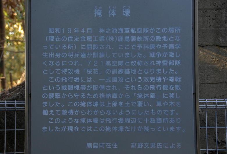 06 桜花2