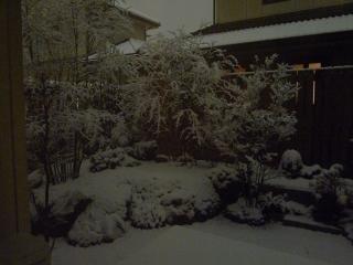 100309雪明り1