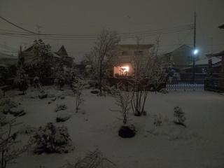 100309雪明り2
