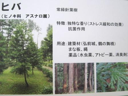 木育②-写真パネル