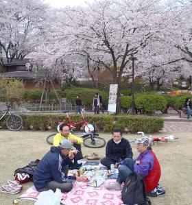 桜32西山jpg