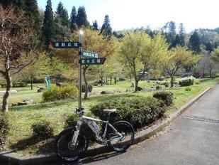 白崎公園11