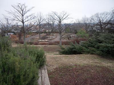 130202-1.jpg