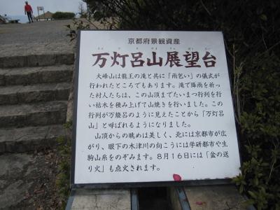 2011_03_10_13.jpg