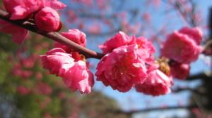 2011_03_23_09.jpg