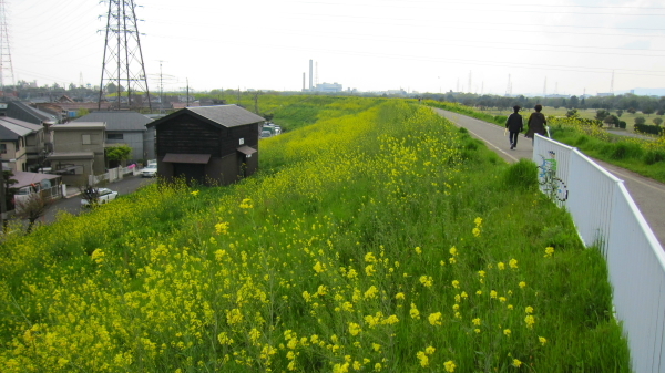 2011_04_24_01.jpg