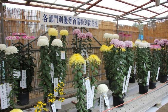 特別賞花壇
