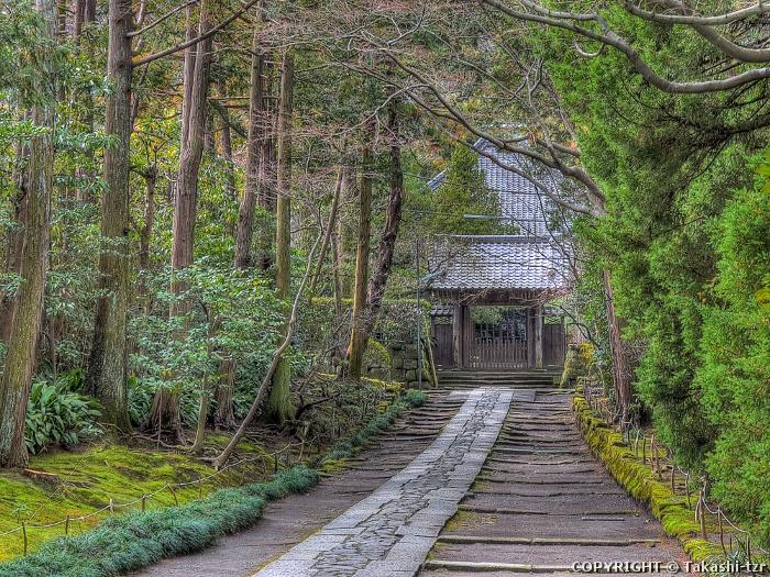 寿福寺境内