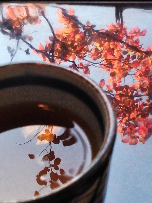 秋を味わう