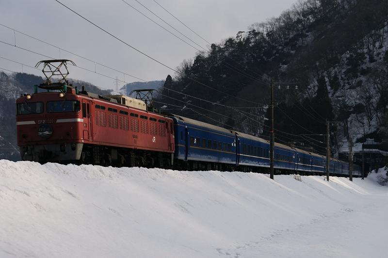 DSC08533.jpg