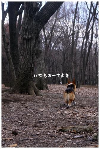046_20110329214001.jpg