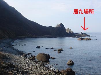 20111030-08.jpg