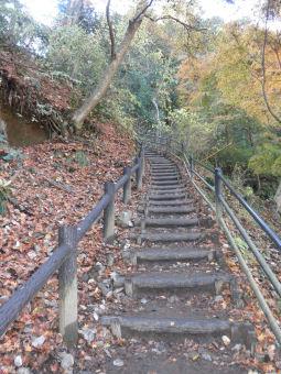 稲荷山コース1