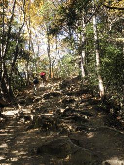 稲荷山コース3