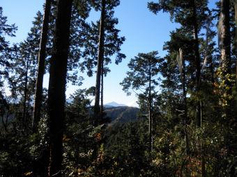 稲荷山コースから見た富士山