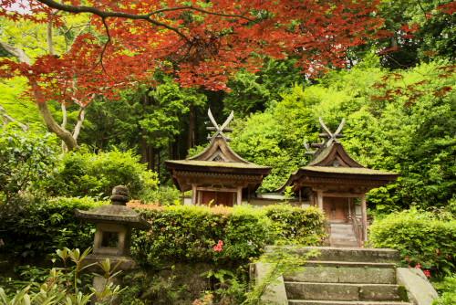円成寺ー2