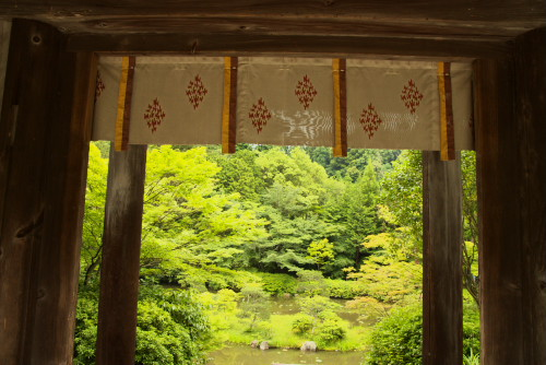 円成寺-4