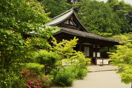 円成寺ー3