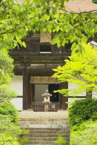 円成寺ー7
