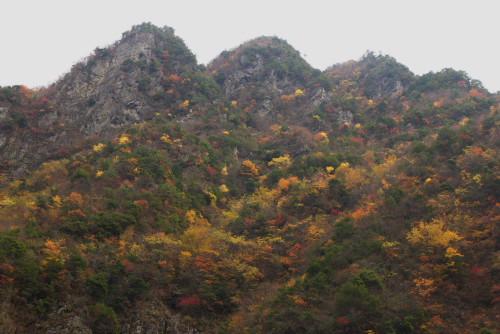 竜ヶ岳ー2