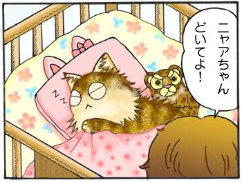 100215cats1.jpg