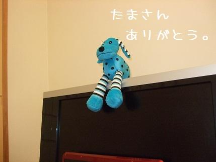 10_20100527151004.jpg