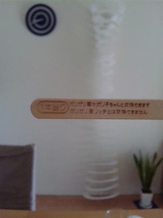 1_20100429101026.jpg