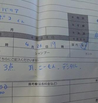 2_20100429101020.jpg