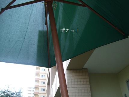 4_20100613224332.jpg