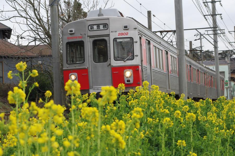 春の渥美線
