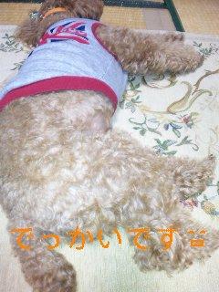 100314_060937_ed.jpg