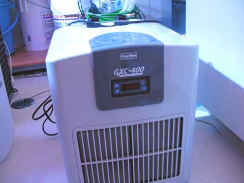 20091205gex400.jpg