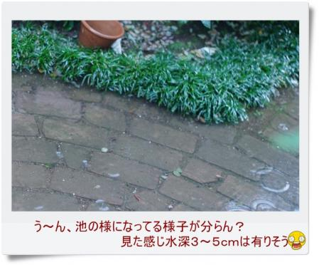 s-rain 002