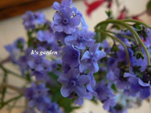 2_20110612191218.jpg