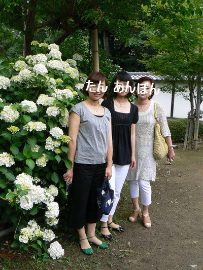 5_20110622195915.jpg