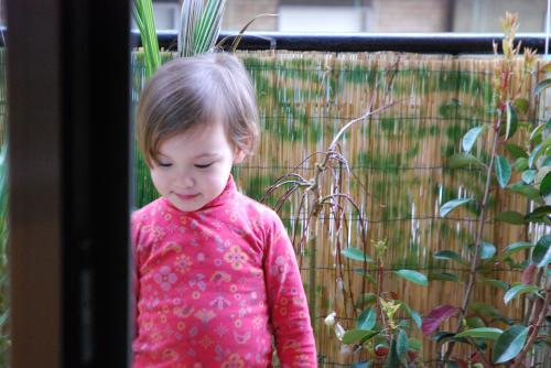 DSC 0224 convert 20100322083533 - 父の日2010 ヴェネツィア風庭にて