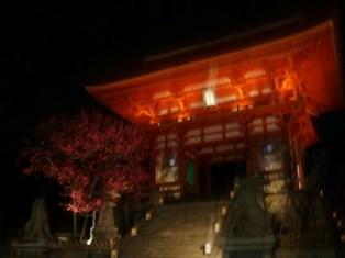201103金閣寺 (5)