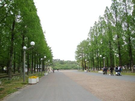 20110503 鶴見緑地