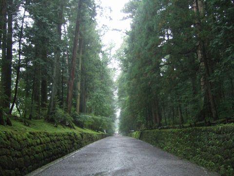 東照宮、雨の参道を歩く。