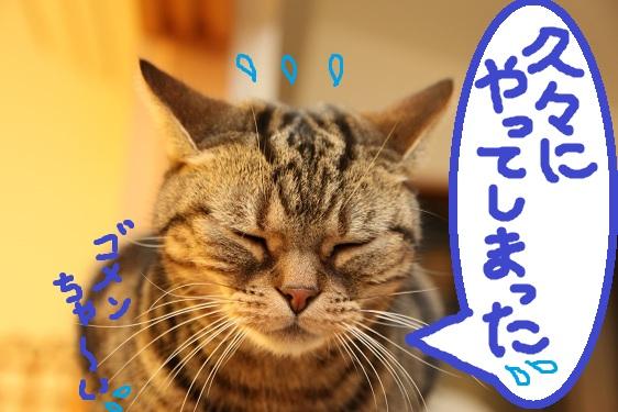 (1)_20110427235005.jpg