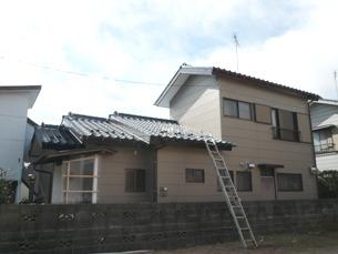P1050055.jpg