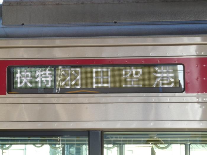 P1080604.jpg