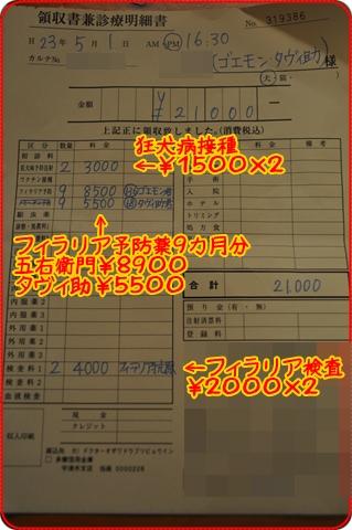 201151-12.jpg