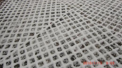 CIMG1260_convert_20100113104451.jpg