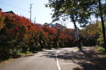 天龍峡の紅葉