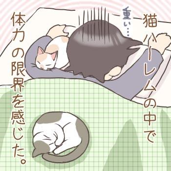 コピー ~ nikki117