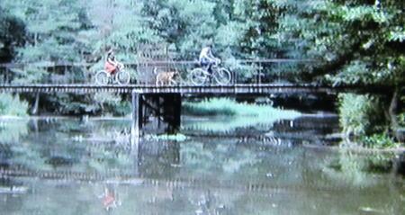 自転車にも