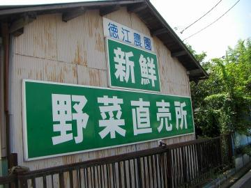 20090817_01.jpg